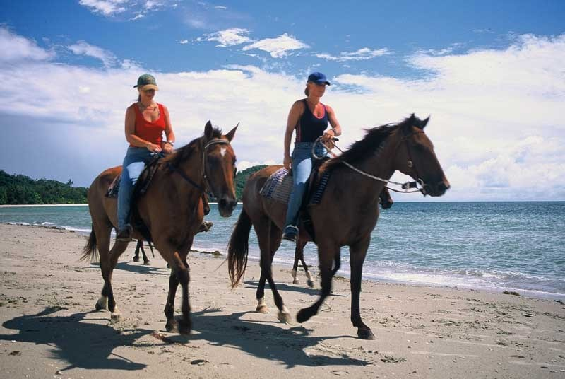 horses_beach